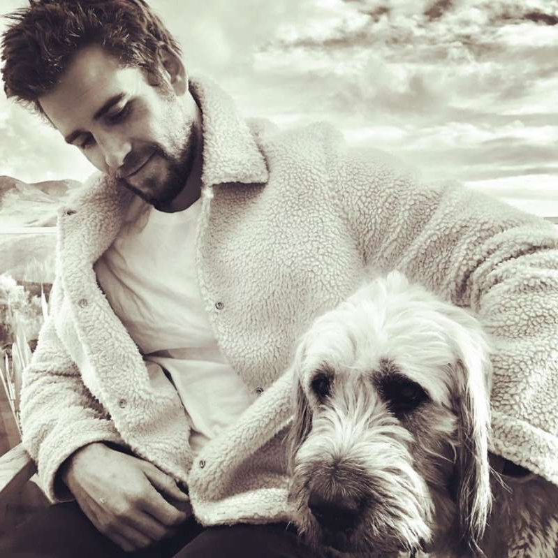 a dog looking at the camera: Liam Hemsworth and his dog Dora.