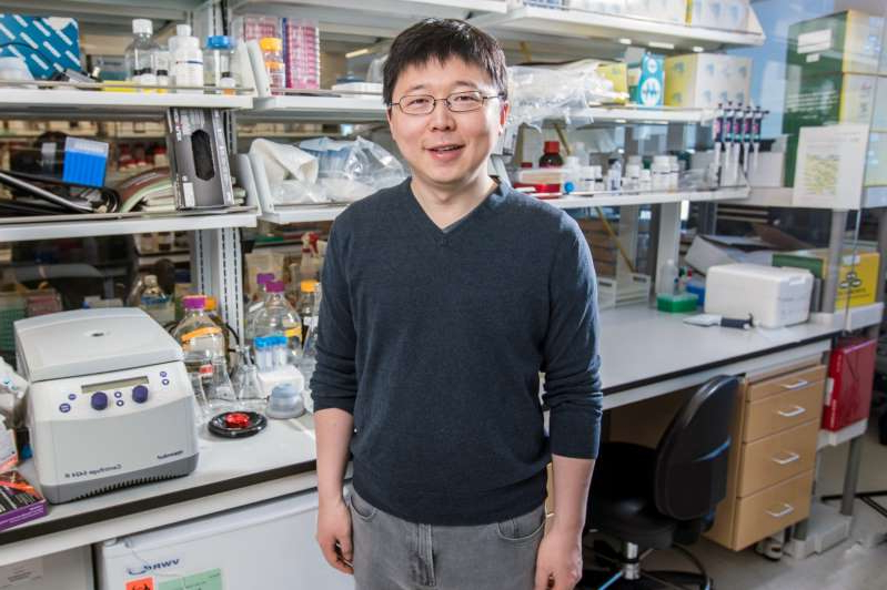 Feng Zhang standing in front of a refrigerator: MIT researcher Feng Zhang will be the principal investigator for the Broad Institute's collaboration with Cyrus Biotechnology. (HHMI Photo)