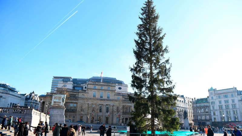 a group of people walking on a city street: The Christmas tree in Trafalgar Square is an annual gift from the Norwegian city of Oslo as a token of gratitude to the people of London for their assistance during World War II.