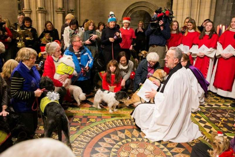 a group of people standing in front of a crowd: Dogs and their owners during the annual Peata Therapy Dog Carol Service at Christ Church Cathedral, Dublin.