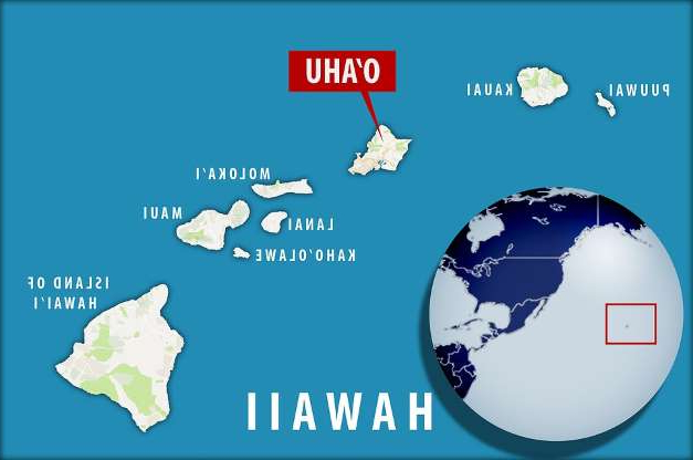 a close up of a map: The crash site, which sits off the coast of O'Ahu, Hawaii, was first discovered in 1999 while researchers from the Hawaii Undersea Research Laboratory (HURL) were conducting a deep-water biological survey