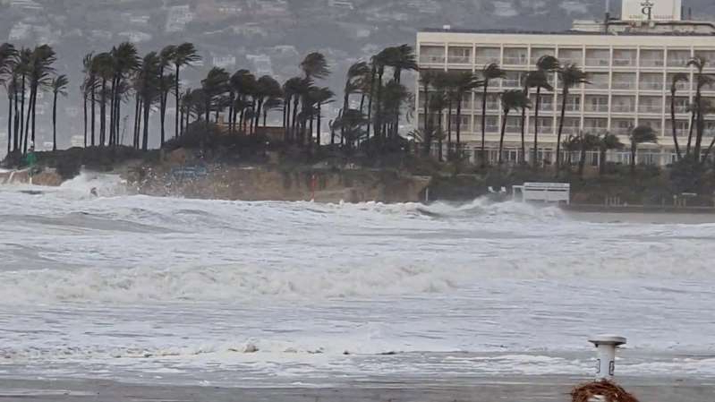 Winds whip the palm trees as Storm Gloria batters the coastline in Javea, Spain January 20, 2020 in this still image taken from social media video. @sofiamoralm/Sofia Moral via REUTERS ATTENTION EDITORS - THIS IMAGE HAS BEEN SUPPLIED BY A THIRD PARTY. MANDATORY CREDIT.