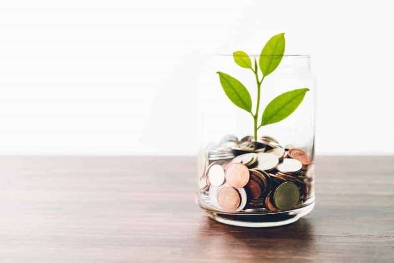 a vase filled with water: Growth from coins