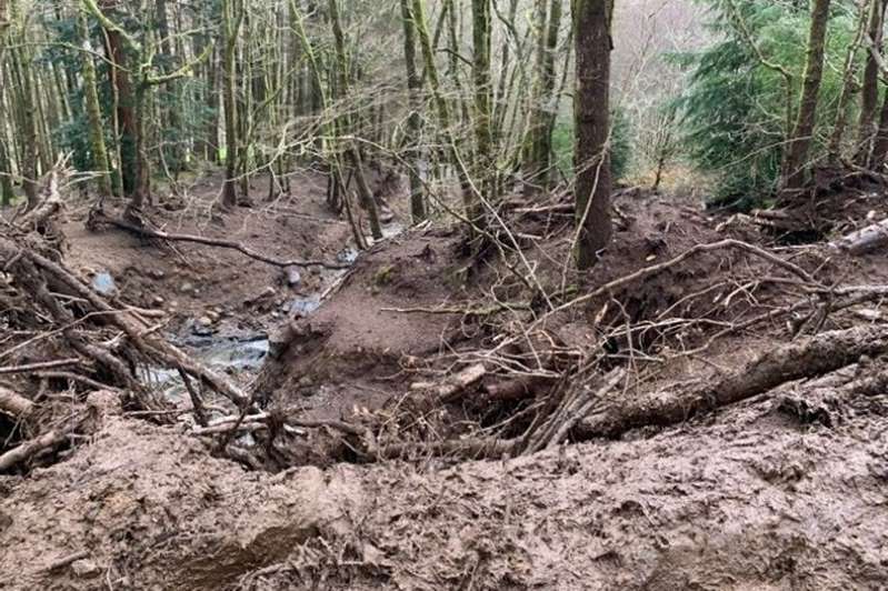 a pile of dirt in a forest: The landslip at Crafnant near Trefriw