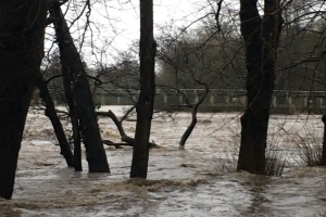 Pictures of River Taff as it bursts it banks in Cardiff during Storm Dennis