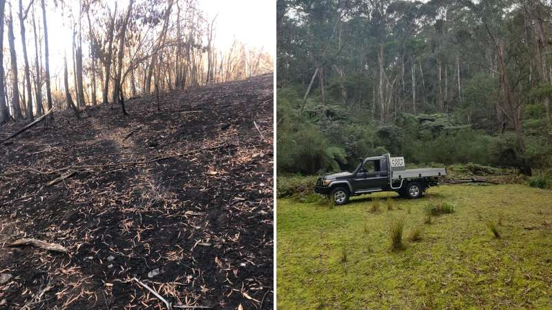 a truck is parked on the side of a dirt field: Servicewoman to return home from Afghanistan to destroyed farm near Narooma NSW. The before and after photo shows the effect of the bushfire damage.