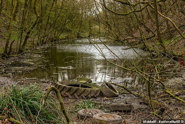 a close up of a pond: Microplastics shed from vehicle tyres are a major source of ocean and river pollution, a UK government-backed study has concluded