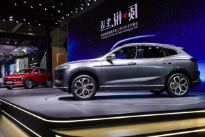 Plans to import first Chinese cars to US scrapped amid pandemic