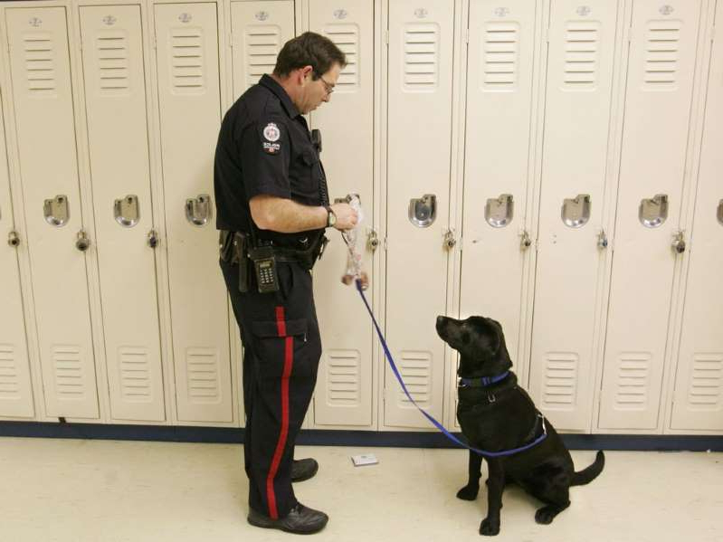a person standing next to a dog: Edmonton Police Service school resource officer Const. Doug Green retrieves a treat for his one-year-old drug-sniffing dog Ebony after she located drugs hidden in a small electronic device during a demonstration of her skills at Harry Ainlay High School in Edmonton on Jan. 10, 2005.