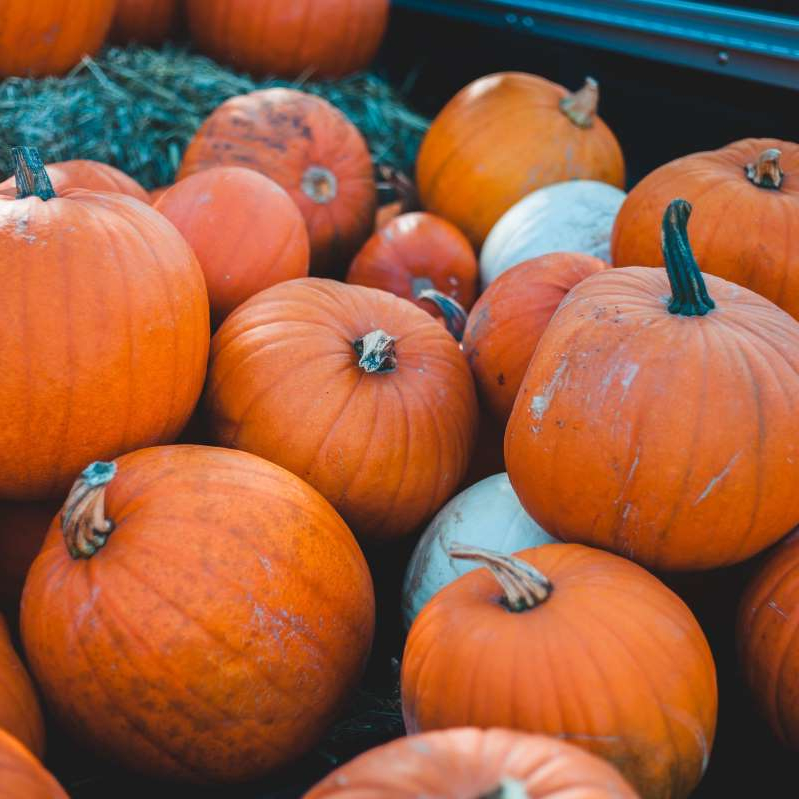 a pile of fruit: A Step-by-Step Guide to Growing Your Own Pumpkins in Your Apartment