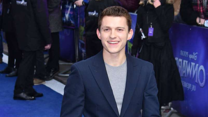 Tom Holland standing in front of a crowd posing for the camera