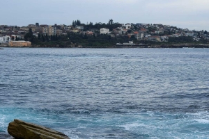 Woman drowns following diving accident in Sydney's east