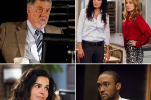 'Rizzoli & Isles' Cast: Where Are They Now?