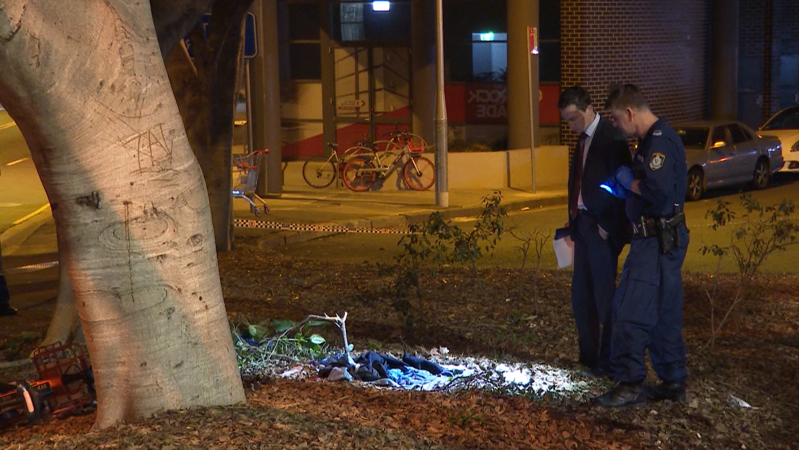 a person standing in front of a tree: Police gather evidence in Pyrmont on Friday evening. (ABC News)