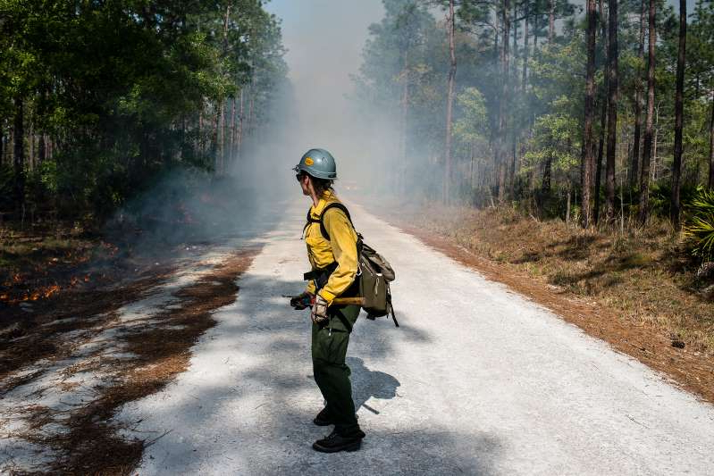 a man riding a motorcycle down a dirt road: Firefighter Kelly Lewis monitors the progression of a controlled burn in March as part of the Prescribed Fire Training Center program. Controlled burns are systematic, planned fires started for conservation reasons.