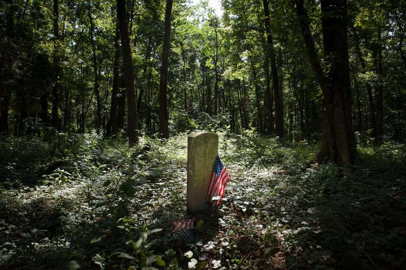 a tree in the middle of a forest: An estimated 17,000 people are buried in Virginia's East End Cemetery, a historic Black cemetery. Years of volunteer work have revitalized the site, but challenges remain.
