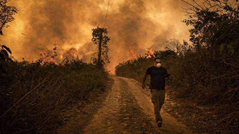a person in a dark forest: This summer, record forest fires are burning in Brazil's Pantanal region. According to experts, Brazil has topped the charts for fire hot spots globally.