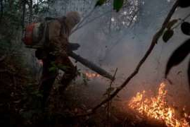 Firefighters work to put out a wildfire in the Porto Jofre region in the Pantanal wetlands in Mato Grosso state, Brazil, on Monday. Out-of-control fires are destroying vast areas of vegetation and killing wildlife, putting one of the world's most diverse ecosystems in jeopardy.
