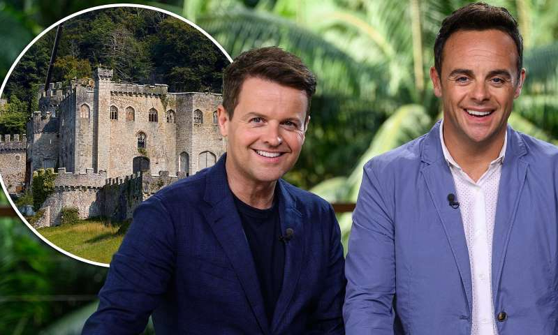 Anthony McPartlin, Declan Donnelly are posing for a picture: MailOnline logo
