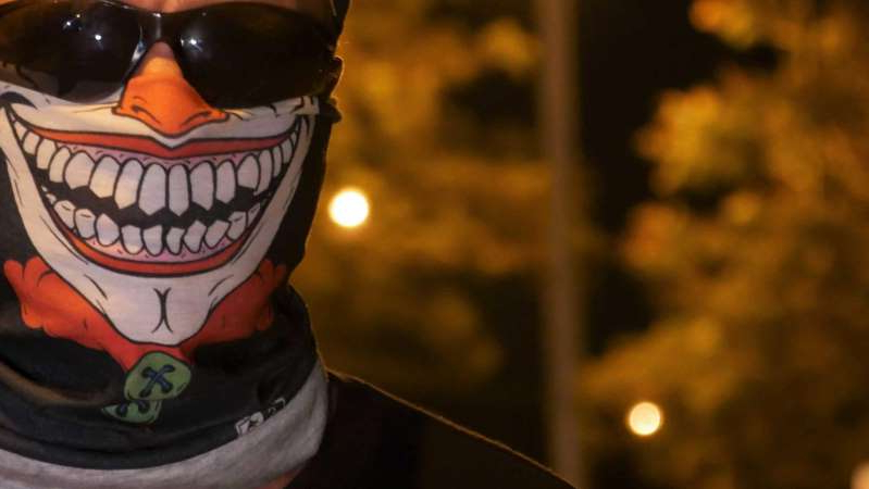 a dog wearing sunglasses: Robbie hides behind a clown mask when he patrols Townsville's streets. (ABC North Queensland: Sofie Wainwright)