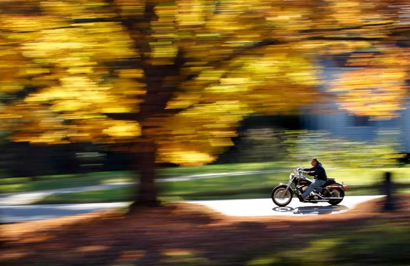 a blurry image of a person riding a motorcycle down a street: A motorcyclist cruises past a maple tree displaying its bright fall foliage in Freeport, Maine.