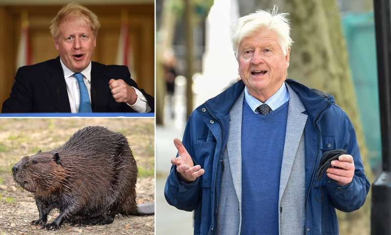 Stanley Johnson, Boris Johnson are posing for a picture: MailOnline logo