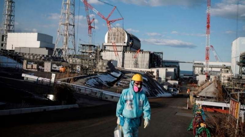 a person standing in front of a large ship in the background: Contaminated water from Fukushima nuclear power plant could affect human DNA if released: Greenpeace