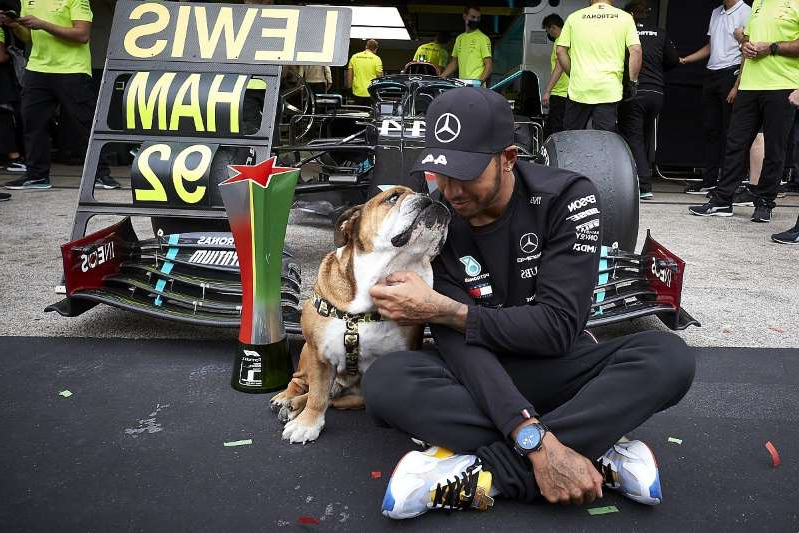 a group of people sitting around a dog: The set-up difference that swung the Portuguese GP