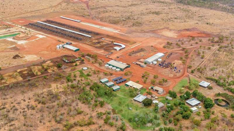 Maryfield Station, south-west of Katherine, has a 10,000-head feedlot and bitumen access. (Supplied: Nutrien Harcourts)