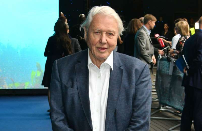 David Attenborough standing in front of a crowd: Sir David Attenborough