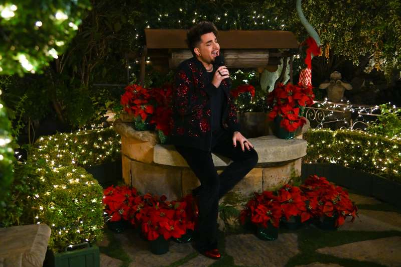 Adam Lambert standing next to a christmas tree: Photo: ABC/Frank Micelotta