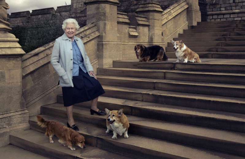 Elizabeth II and a dog on a leash in front of a building: Queen Elizabeth with her dogs in 2016