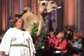 Goats, Horses, Camels and More Gather for 'Blessing of the Animals' at Church Ceremony