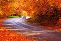 Eight tips for driving safely this Fall