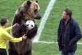 Bear stunt at Russian soccer game condemned by animal rights groups