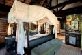 This Glamorous Safari Lodge Will Have Wildlife Views From Your Private Pool, Bed, and Even the Shower