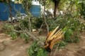 17 Dead In Thunderstorms Across Uttar Pradesh