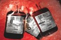 Contaminated blood inquiry: children as young as eight infected with hepatitis C