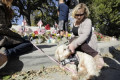 Therapy dogs come to Thousand Oaks to comfort mourners after bar shooting