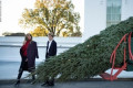 White House set to welcome official Christmas tree