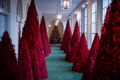 Melania Trump didn't show up to explain her Christmas decorations. So what about those red trees?