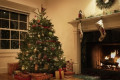 Christmas trees are more expensive this year, continuing trend