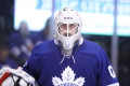 Toronto Maple Leafs may search for more goaltending