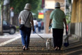 Walking dogs is sending older people to the ER, study says