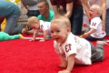 Babies Crawl to Victory in Annual Race in Lithuania