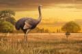 Big birds: Giant, 1,000-pound birds once roamed around Europe