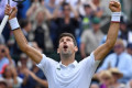 Djokovic into a ninth Wimbledon semi-final