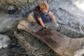 Parc Jurassic: Huge dinosaur fossil dug up in south France