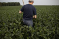 Farm Tensions Escalate as USDA Staffer Is Threatened in Midwest