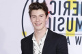 Shawn Mendes says sorry for 'racially insensitive comments'